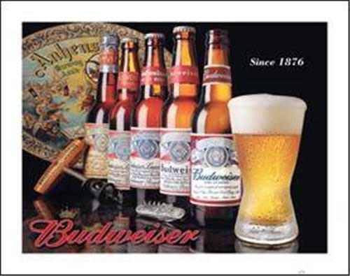Bud Beer Bottle History Tin Sign Retro Pub Garage Home Bar Wall Decor Gift USA