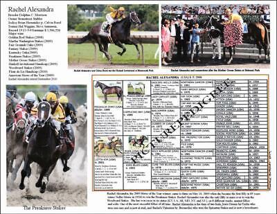 RACHEL ALEXANDRA PREAKNESS STAKES HORSE RACING JOCKEY SILKS PIN