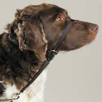 Gentle Leader Dog Head Collars - Training Stop Pulling Lunging Unwanted Behavior