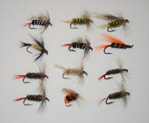 Details about Lot of 12 New Custom Fly Fishing Flies Trout Lures Bugs Nymph  Caddo