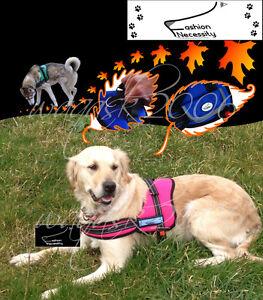 Pink-Dog-Harness-S-M-L-XL-padded-Golden-Retriever-Irish-Setter-Sheep-Mastiff