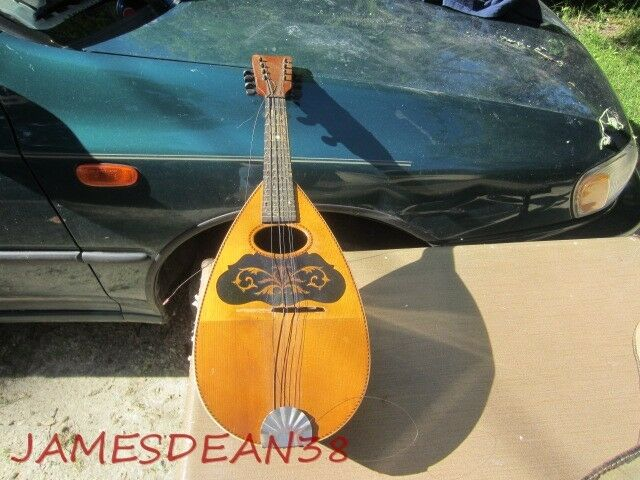 VINTAGE BOWL BACK POTATO BUG MANDOLIN AS IS