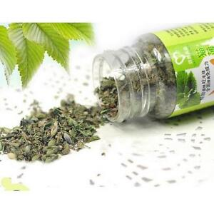 Fresh-Organic-Dried-Catnip-Nepeta-cataria-Leaf-amp-Flower-Herb-BulkS