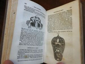 Physiology Human Comparative Females 1836 Comstock illustrated science text book