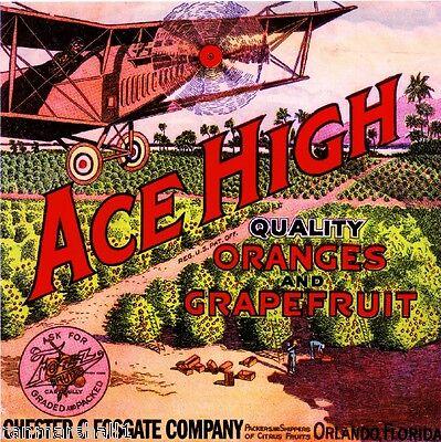Orlando Florida Ace High #2 Airplane Orange Citrus Fruit Crate Label Art Print