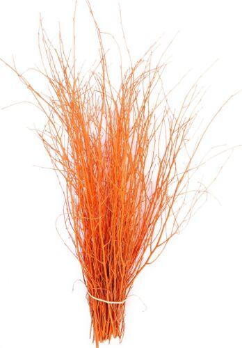 90cm/'s 25 tallos Ramitas y ramas de abedul de Color Decorativa Naranja Calabaza