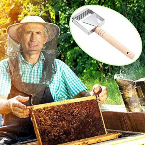 Honeycomb Honey Scraper Iron Uncapping Fork Wooden Handle Beekeeping Tool US