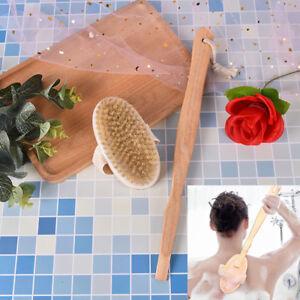 Setole di cinghiale per il corpo del bagno setole esfolianti per il corpoZZIT