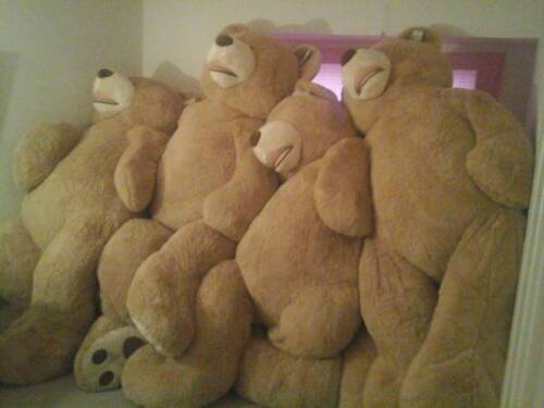 """93/"""" new with tag Hugfun bear Seattle area local pickup Mother/'s Day Graduation"""