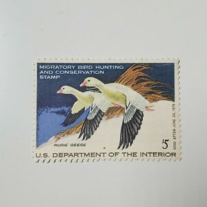US Federal Duck Hunting Stamp 1977 RW44 $5 Ross' Geese Migratory Bird Hunting
