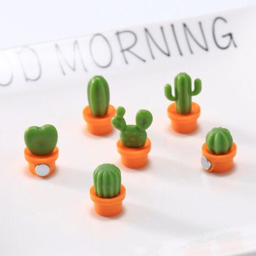US 6PCS Set Fridge Magnets Succulent Plant Cactus Button Magnet Sticker Decor SH