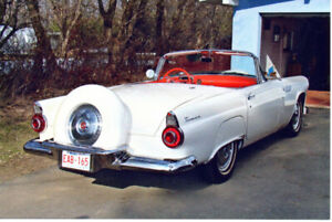 LOOKING FOR 1956 TBIRD wanted