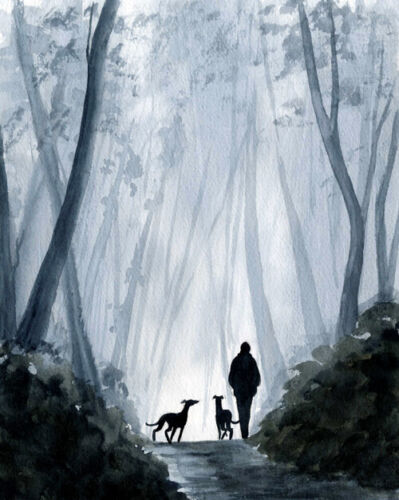 MAN DOG WALKING 5525 GREYHOUND WHIPPET LURCHER DIANNE HEAP TREES COUNTRY WOODS