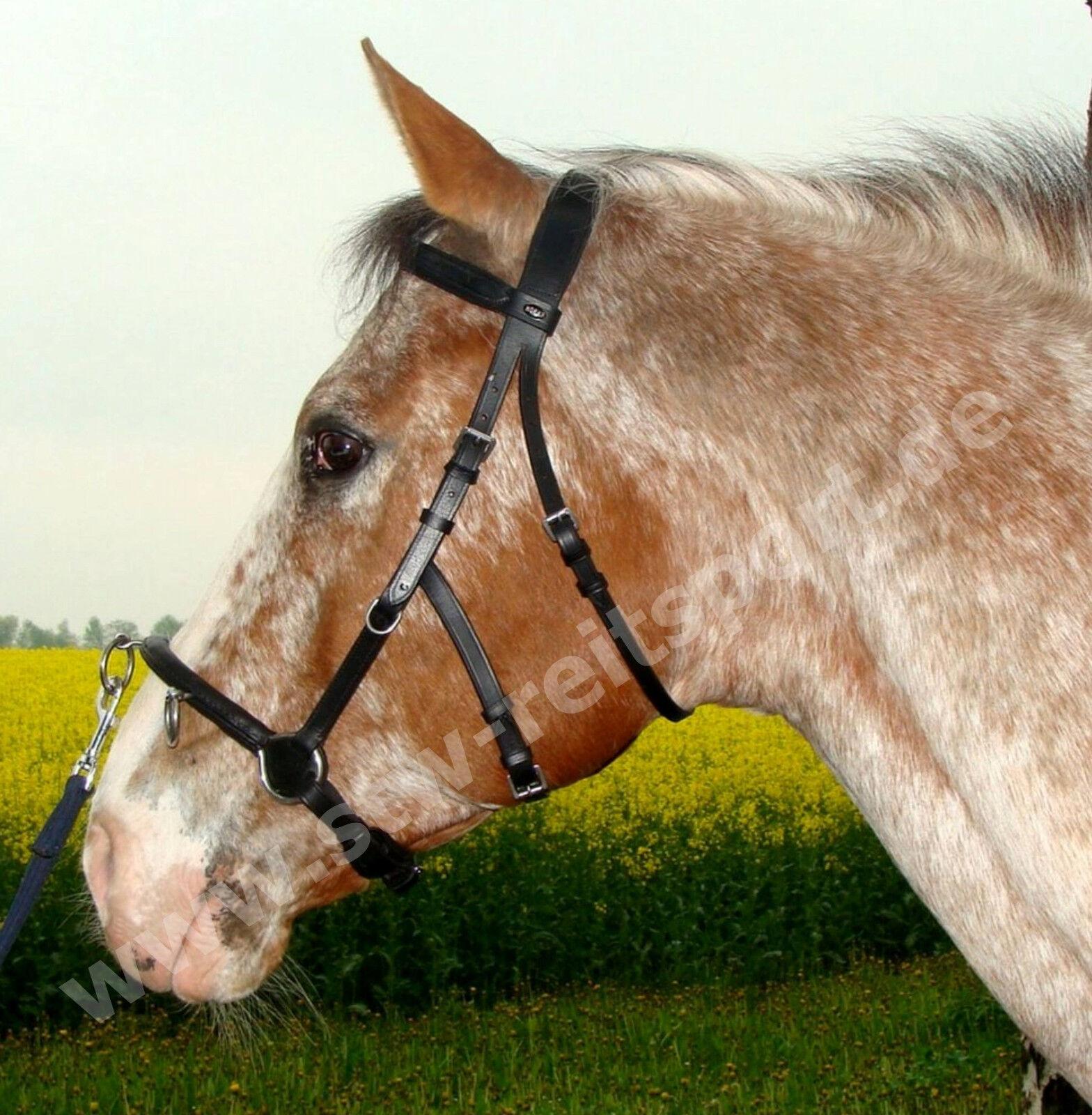 Horka Cavecon, Kappzaum m. Gebiss nutzbar, Leder black, Pony Vollbluet Warmbluet