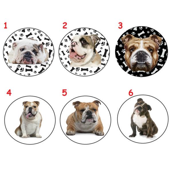 Sparsam Englisch Bulldog English Bulldog Taschen Spiegel Pocket Mirror Abn1 - Neu Zu Hohes Ansehen Zu Hause Und Im Ausland GenießEn