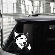 Funny Car Sticker Vinyl Decal Rear Husky dog Motorcycles  Window Decal Car