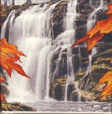 Kanada 20 Dollar Silbermünze PP Autumn Falls (Herbstwasserfall)