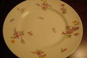 Antique-Bernardaud-Limoges-France-6-salad-dinner-plates-8-1-2-034-c1900s-6