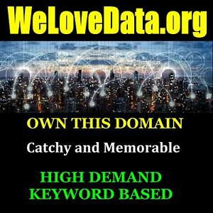 WeLoveData-org-Premium-Keyword-Domain-Brandable-Data-Services-Business