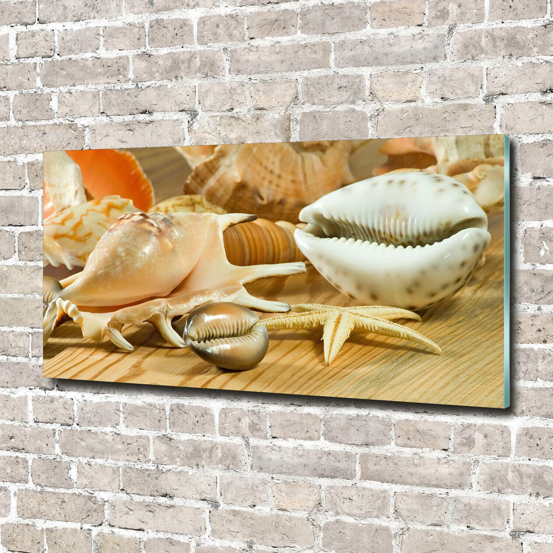 Acrylglas-Bild Wandbilder Druck 140x70 Deko Sonstige Muscheln auf Holz
