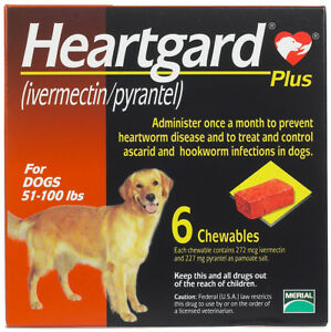 Heart gard Plus 6 Chewable Tablets for Dogs, up to 51-100 lbs exp 11/2020