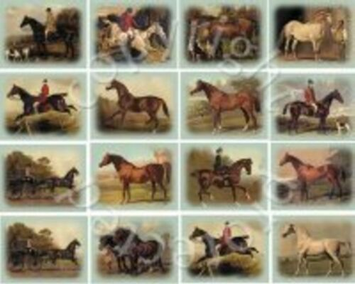 Horses from The Book of the Horse limited edition set of 20 Trading Cards