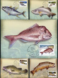 2003-Angling-Fishing-Maxi-Cards-Prepaid-Postcard-Maxicards-Australia