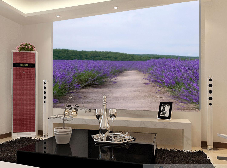 3D Der Weg in den Garten 7876 Fototapeten Wandbild Fototapete BildTapete Familie