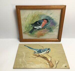 Watercolour-Painting-Birds-One-Signed-Alan-Codd-Mounted-Framed-Blue-Jay-On-Noaed