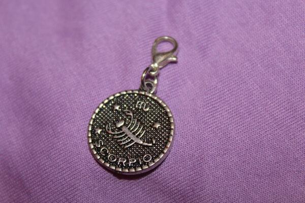 1 Anhänger Für Bettelarmband + Karabiner Silbern Münze Skorpion Charm Horoskop Ausreichende Versorgung