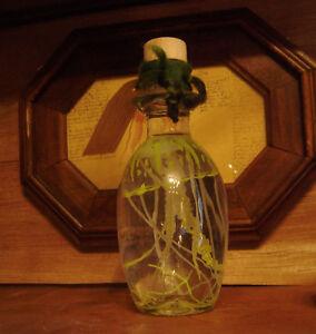 Alchemie-Labor-Qualle-im-Glas-Gift-Gelb-Deko-FX-Praeparat-Taxidermy-Unikat
