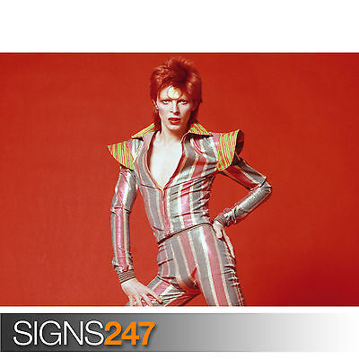 1136 DAVID BOWIE YOUNG Photo Picture Poster Print Art A0 A1 A2 A3 A4