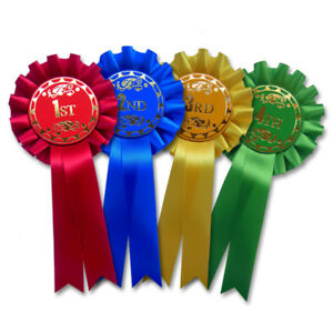 Details about Dog Show Rosettes 1st - 4th, Prize Award Rosettes 1st, 2nd,  3rd, 4th Place - F1