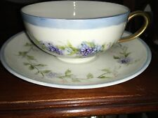 Blue floral Bavaria Hutschenreuther  bone china Tea Cup & Saucer Germany