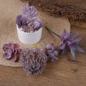 1-STUCK-Kuenstliche-Sukkulente-Faux-Kaktus-Kunststoff-Lila-Pflanze-Hausgarte-TPD
