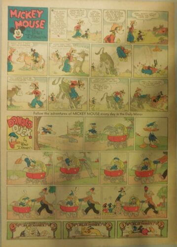 Mickey Mouse Sunday Page by Walt Disney from 8//22//1937 Tabloid Page Size