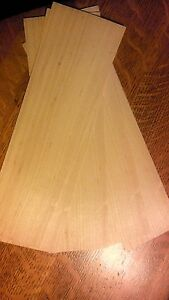 luthier wood filler veneer 0.020 thin  fretless bass conversion fret  filler