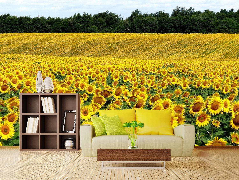 3D Sonne Blume Himmel 50 Tapete Tapeten Mauer Foto Familie Tapete Wandgemälde DE