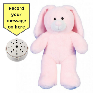 Record a 20 Sec Personalized Message in a Pink Bunny Gift Teddy Bear 25cm/10""