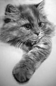 Cat-Cross-stitch-pattern-pdf-format