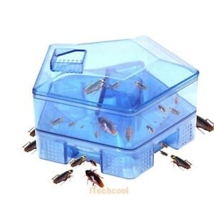 Insect Bug Trap Catcher Cockroach Ant Bed Bug Flea Pest