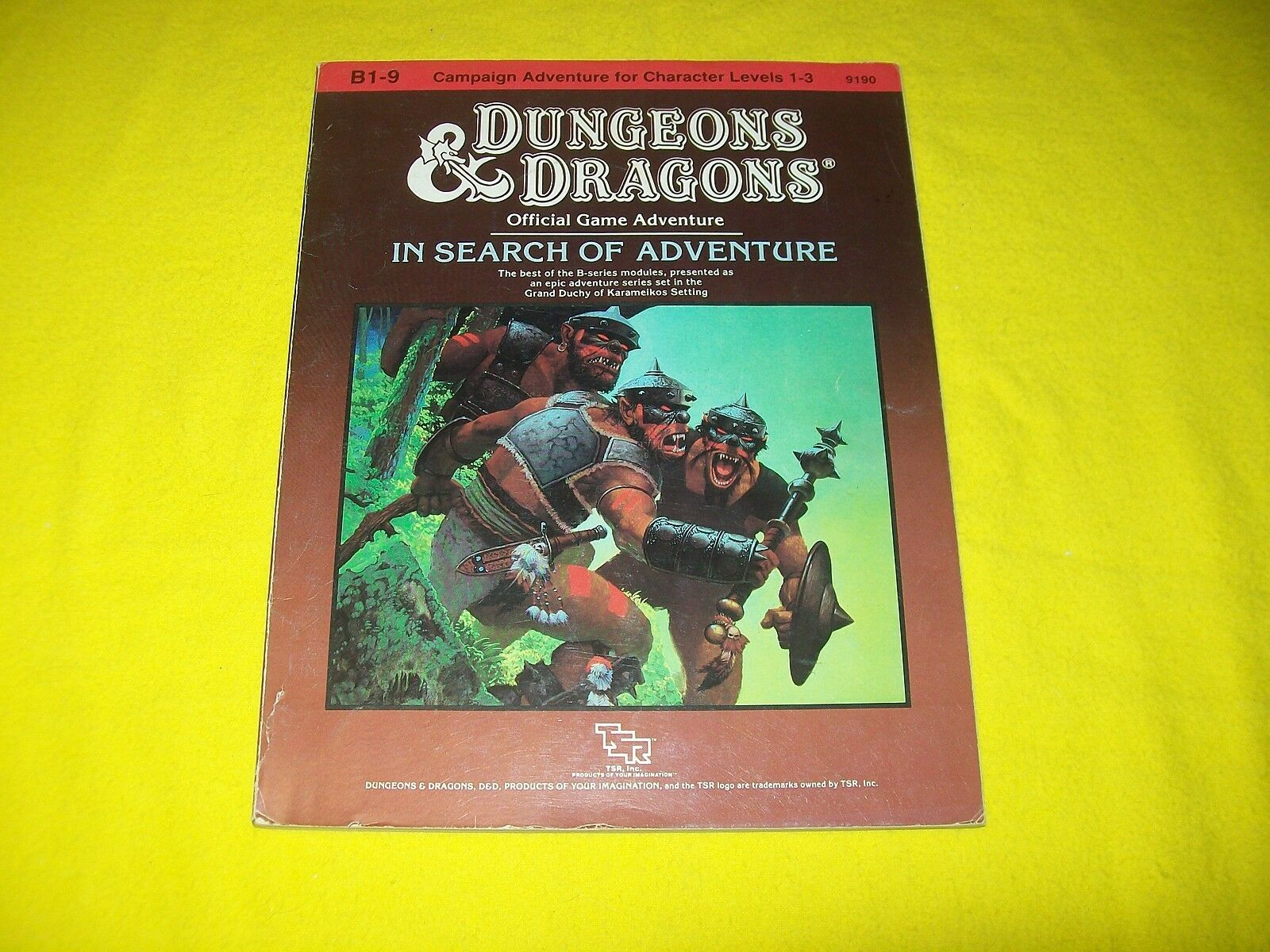 B1-9 B1-9 B1-9 IN SEARCH OF ADVENTURE DUNGEONS & DRAGONS TSR 9190 3 SUPERMODULE 007a56