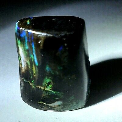 Indonesia/'s opalized wood cut in France 8.91 carats 2 pieces