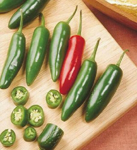 1,000 Seeds Serrano Hot Chili Pepper Seeds BULK SEEDS