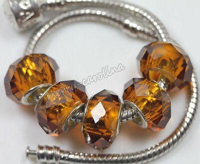 Hot Stylish 5Pcs Big Hole Lampwork Beads Charms Bracelet DIY Finding Wholesale