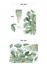 thumbnail 5 - Tropical-Green-Plants-Palm-Leaves-Vines-Garland-Wall-Decals-Vinyl-Decal-DIY-AU