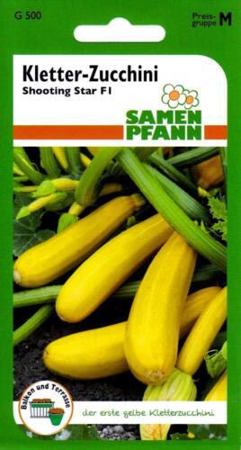 """Samen Kletter-Zucchini /""""Shooting Star F1/"""" der erste gelbe Kletterzucchini"""