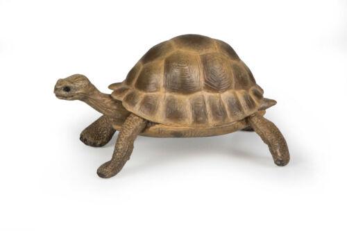 Papo 50264 Hermanns Turtle 3 1//8in Wild Animals Novelty 2020