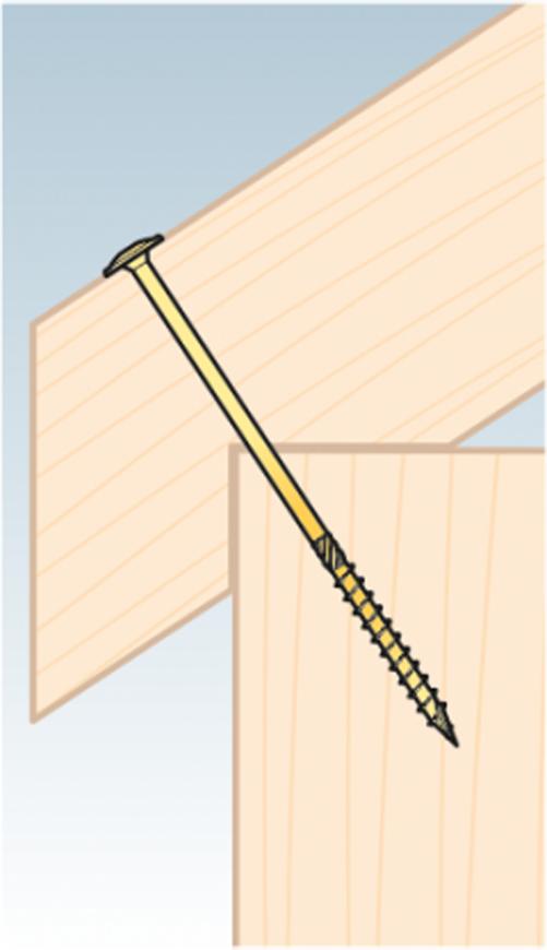 Tellerkopfschrauben 6 8 10 Holzschrauben mit Tellerkopf Torx CT CT CT Holzbauschrauben | Outlet Store  28f237