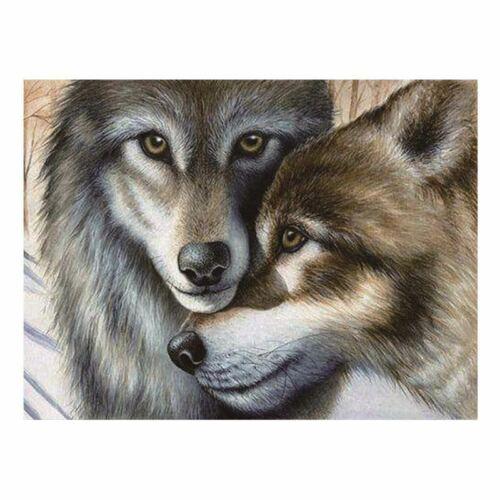Voll runde Diamant 5D DIY Stickerei von Diamant Wolf Paar Malerei von Diama Q2O6